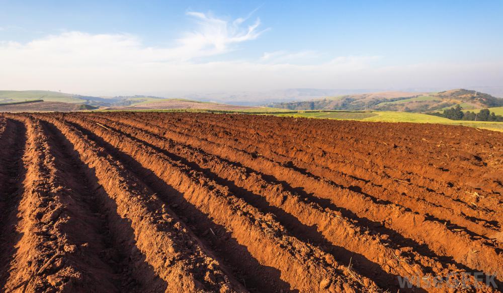 freshly-plowed-field-against-blue-sky